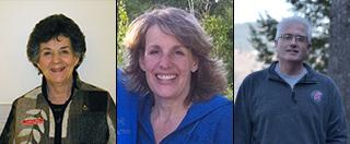 Linda Pike, chair; Robin Eckmann, Deputy Prosecutor, Latah County; Steve Fiscus, Latah County Assessor.